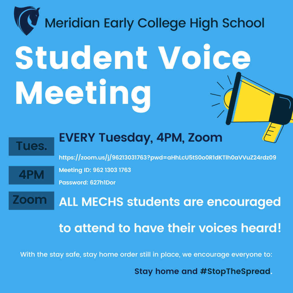 Student Voice Meeting